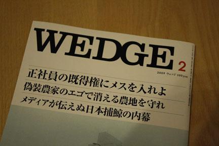 wedge_2009_2_1.jpg