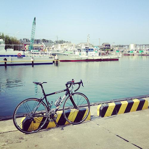 再び漁港へ
