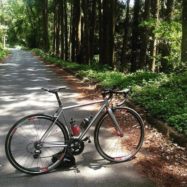 Cielo Road Racer 300km インプレ